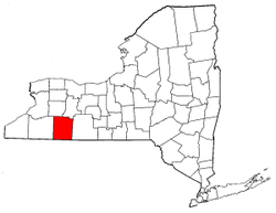 New York Map showing Allegany County