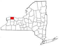 New York Map showing Orleans County