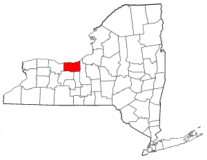 New York Map showing Wayne County