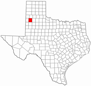 Texas Map showing Lamb County